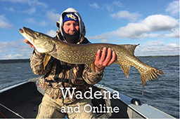 Wadena button M State